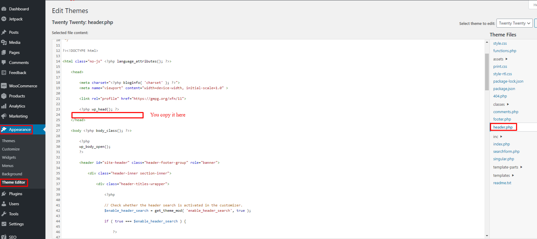 Microsoft clarity code place in header.php theme editor