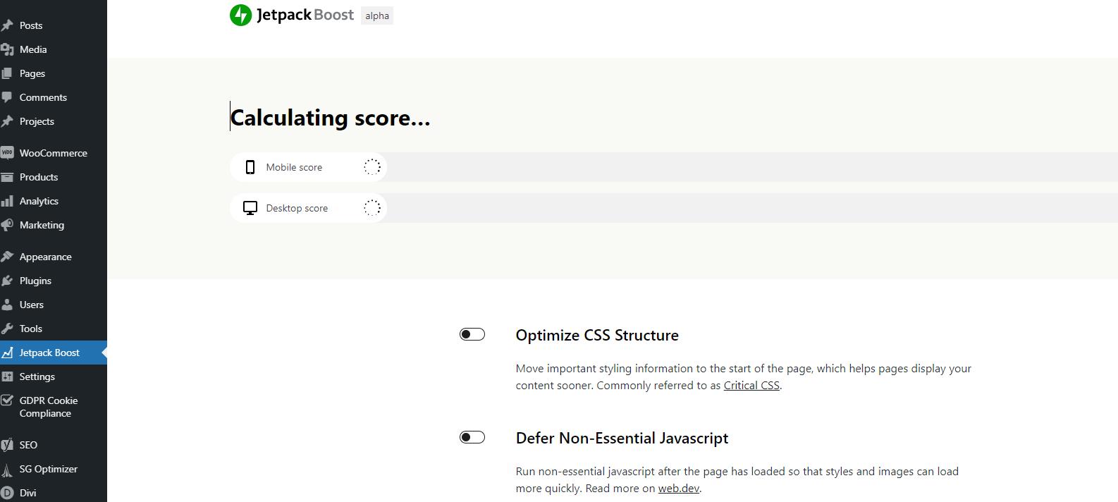 Jetpack boost calculating web scores