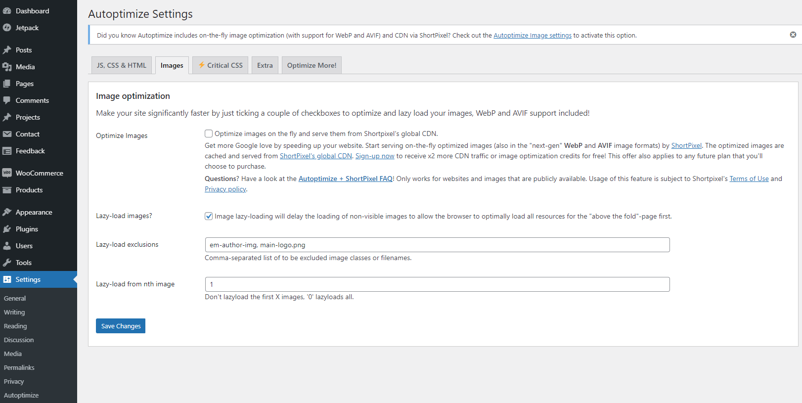 autoptimize exclusions settings