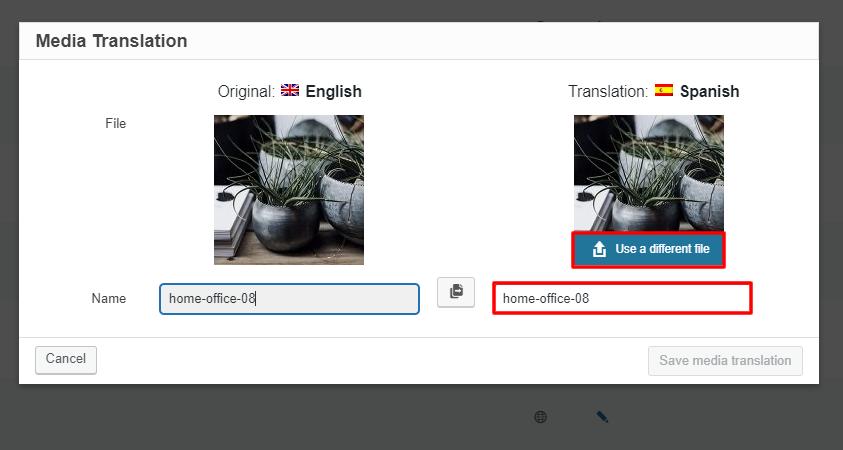 WPML media translation settings per item