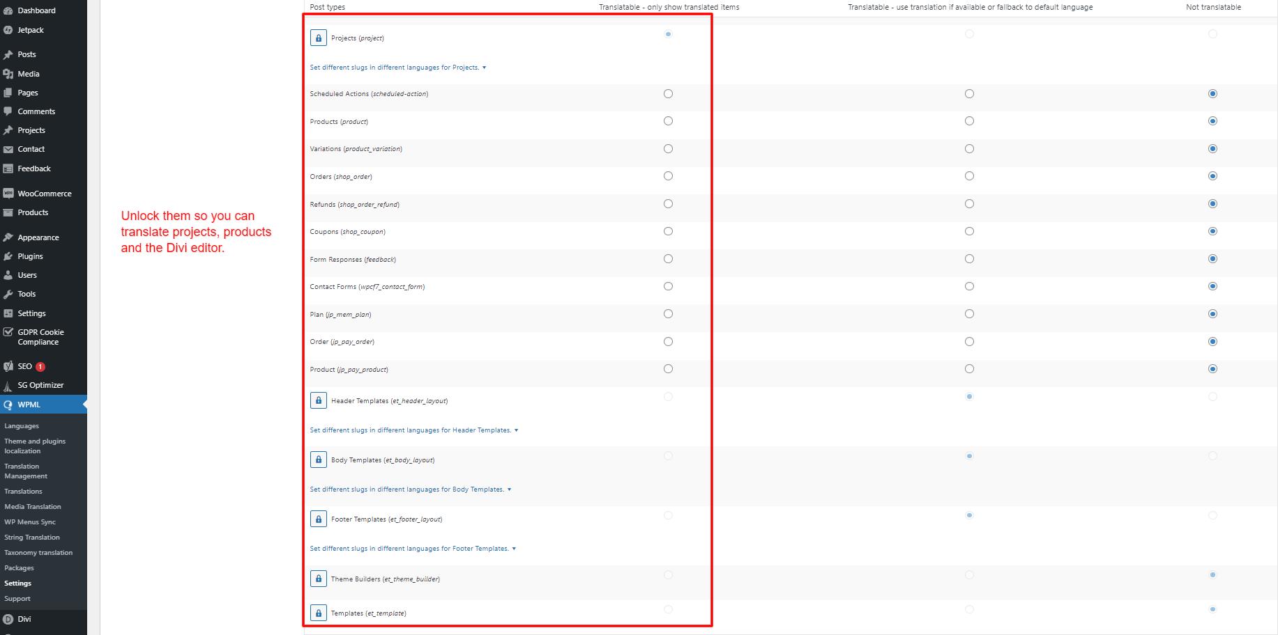 WPML content type settings